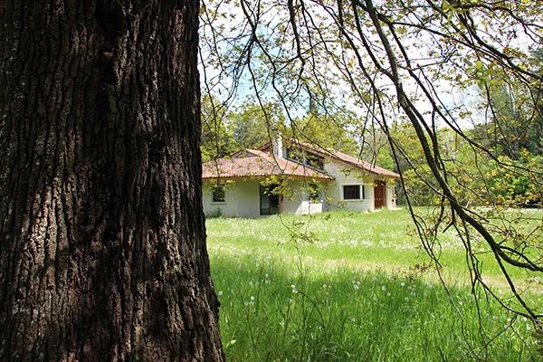 Maison de l'Arboretum de Cardeilhac