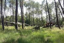 Dinosaures Parc, Azur, France