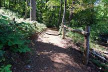 Saunders-Monticello Trail, Charlottesville, United States