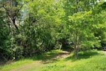 Pine Point Regional Park, Stillwater, United States