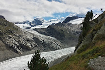 Morteratsch Glacier, Pontresina, Switzerland