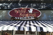 White Squirrel Shoppe, Brevard, United States
