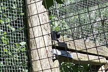 Odsherred Zoo Rescue, Asnaes, Denmark