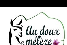 Au Doux Meleze, Montclar, France