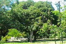 Adahil Barreto Park, Fortaleza, Brazil
