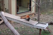 Chattanooga Zoo, Chattanooga, United States