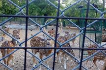 Deer Park, Ashok Vihar, Jaipur, Jaipur, India