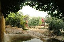 Carmey Avdat, Sde Boker, Israel