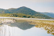 Skadar Lake National Park, Podgorica, Montenegro