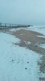 Собачий пляж Таганрога