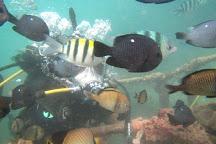 NBC Dive & Watersport, Tanjung Benoa, Indonesia
