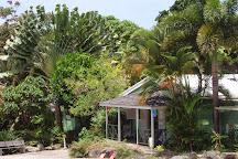 Andromeda Botanic Gardens, Bathsheba, Barbados