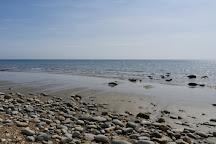 Fossil Hunting Walks, Lyme Regis, United Kingdom