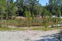Lake Lizzie Nature Preserve, Orlando, United States
