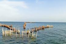 Isole Kerkennah, Kerkennah Islands, Tunisia