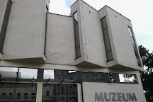 Muzeum Okregowe Ziemi Kaliskiej, Kalisz, Poland