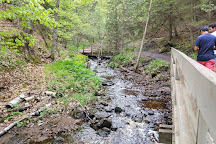 Munising Falls, Munising, United States
