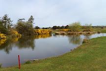 Monifieth Golf Links, Carnoustie, United Kingdom
