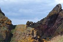 St Abbs Head National Nature Reserve, St Abbs, United Kingdom