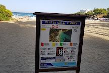 Cala Lena, San Carlos, Spain