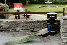 Banada Stables, Tubbercurry, Ireland