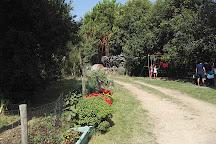 Azienda Agricola Cascina Matine', Chieri, Italy