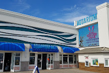 Jenkinson's Aquarium, Point Pleasant Beach, United States