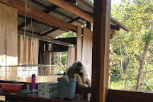BeTreed Adventures, Sdau, Cambodia