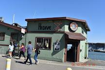 Hi Dive, San Francisco, United States