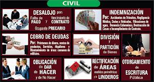 Llamo y Manrique Centro de Conciliación Extrajudicial 4