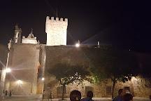 Palace de las Ciguenas, Caceres, Spain
