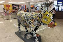 Shopping Bosque Grao Para, Belem, Brazil