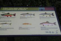 Decorah Fish Hatchery, Decorah, United States