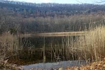 Lakota Wolf Preserve, Columbia, United States