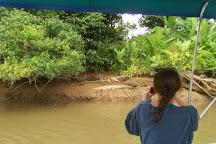 Sierpe Azul Tours, Sierpe, Costa Rica