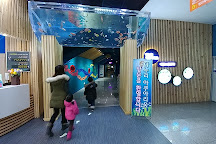 Danuri Aquarium, Danyang-gun, South Korea