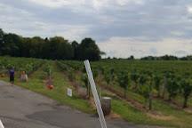 Casa Larga Vineyards, Rochester, United States
