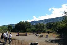 Centre Equestre du Cap, Saint-Leu, Reunion Island