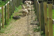 Abbotsbury Childrens Farm, Abbotsbury, United Kingdom