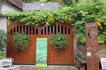 Domaine Patrice Colin, Thore-la-Rochette, France