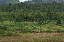 MandaLao Elephant Conservation, Luang Prabang, Laos