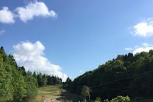 Tarzania, Nagara-machi, Japan