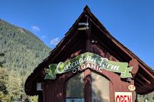 Cascadian Farm Organic, Rockport, United States