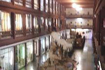 Museo de Ciencias Naturales El Carmen, Onda, Spain