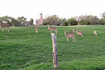 Hinman Island Park, New Braunfels, United States