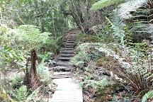 Leura Cascades, Leura, Australia