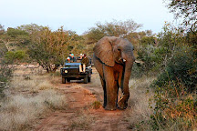Wild Wings Safaris, Kruger National Park, South Africa