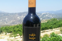 Nelion Winery, Praitori, Cyprus