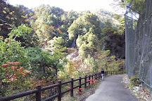 Kaore Valley, Seki, Japan