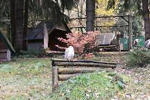 Greifenwarte Falknerei am Rennsteig, Waltershausen, Germany